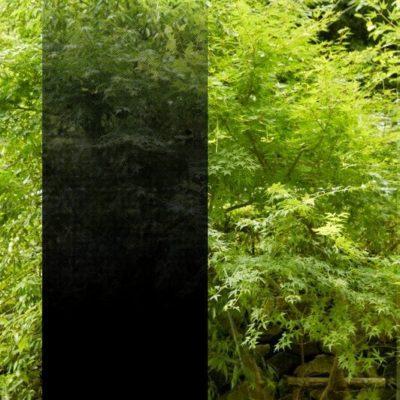 3M Fasara - Illumina Black