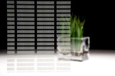 3M Fasara - Pixela